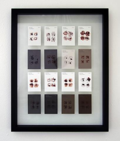 """<em>Casta 2, Casa Blanca.</em> Detail. (2016) Paint Chips, Artist's Blood. 14"""" x18"""""""